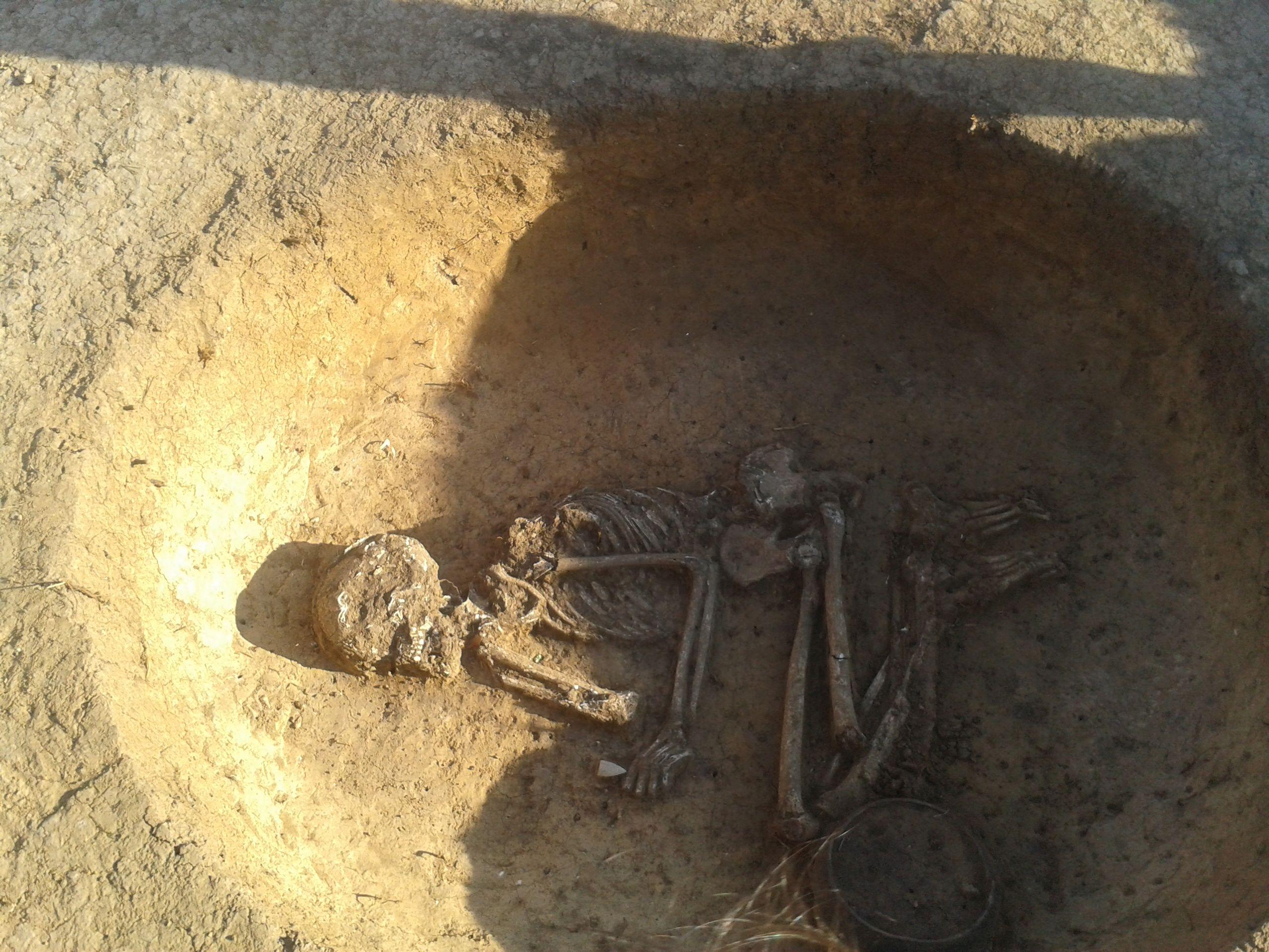hrob01
