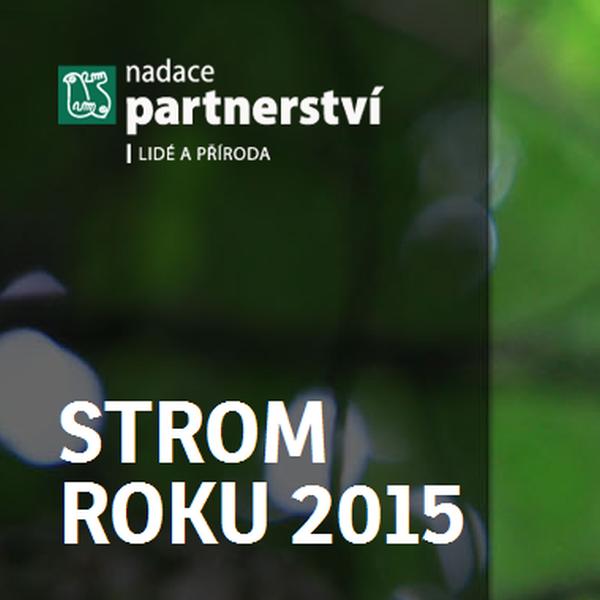 strom-roku-2015-ikona