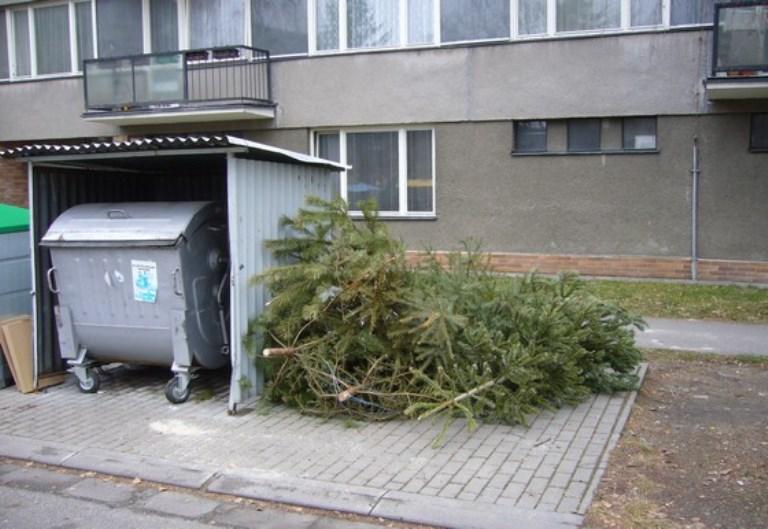 stromky-popelnice